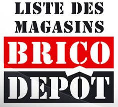 Magasin Brico Depot Vendee
