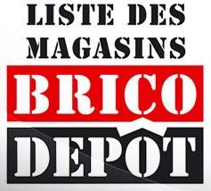 Les Magasins Brico Depot En France