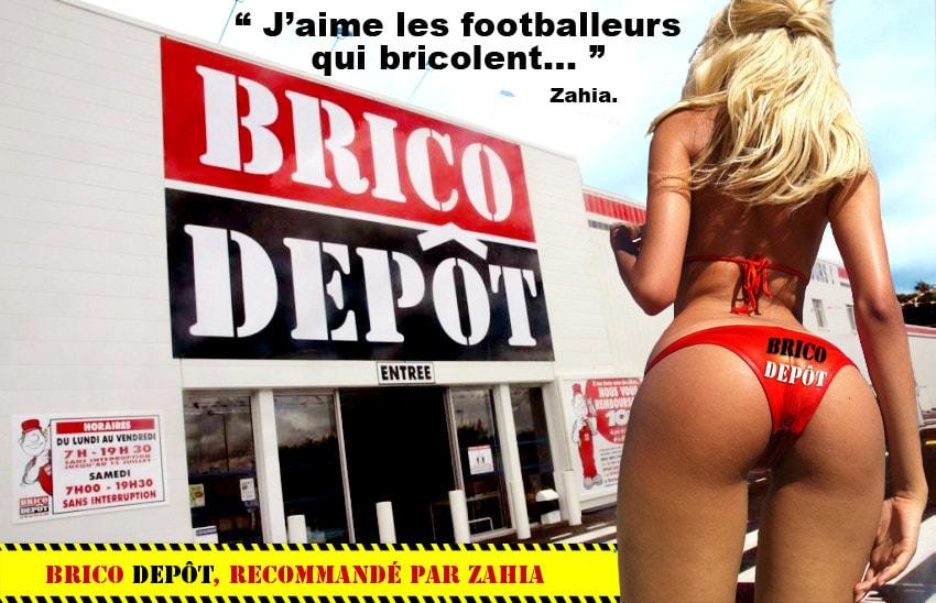 avis Brico Depot