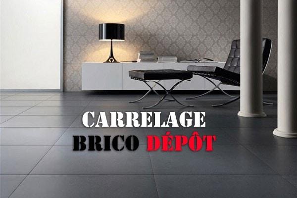 Carrelage Garage Brico Depot Venus Et Judes