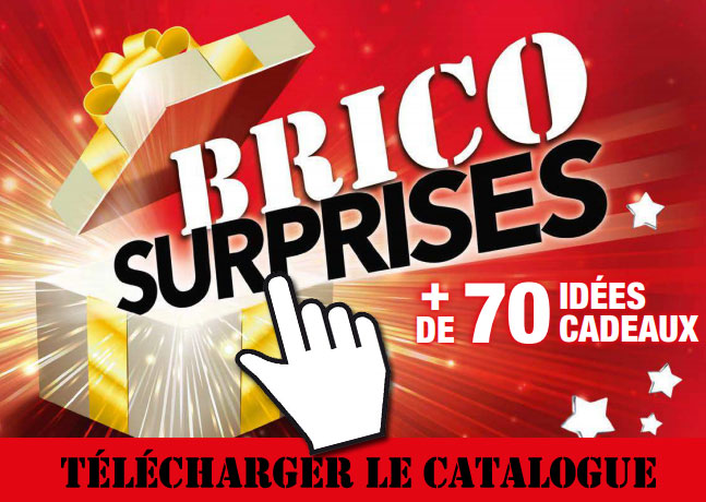 catalogue brico depot novembre