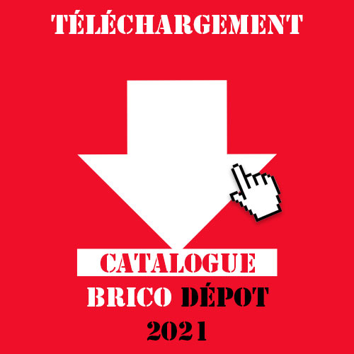 catalogue brio depot 2021 pdf